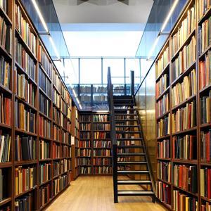 Библиотеки Венева